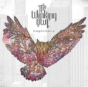 300px-The_Winking_Owl_-_Supernova