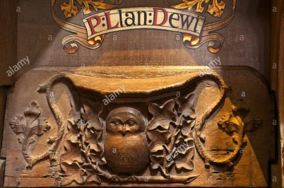 owl-in-ivy-misericord-st-davids-cathedral-interior-pembrokeshire-national-CW6GHX