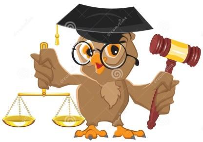 owl-judge-holding-gavel-scales-vector-cartoon-illustration-49374930