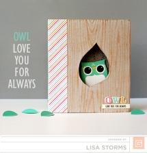 owl-mini-album