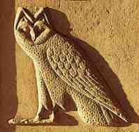 owl-relief107