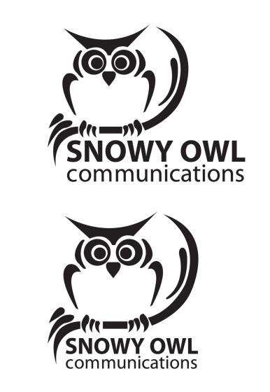 snowy owl white