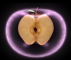 WEB_Still_Apple