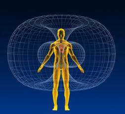 bodymagneticfield