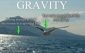 gravityy