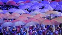 umbrella-2012-pr