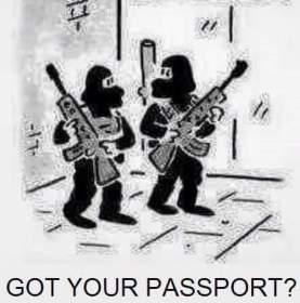 Image result for passport false flag