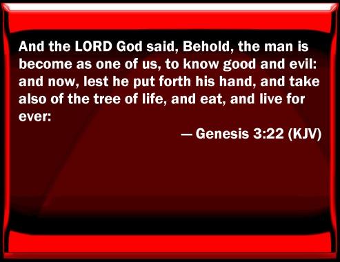 322 bible.jpg